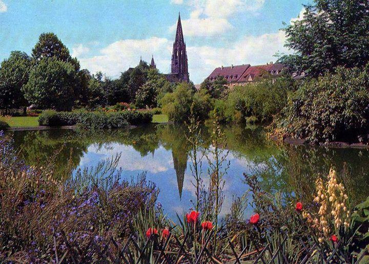 Der Freiburger Stadtgarten In Den 1960er Historisches Freiburg