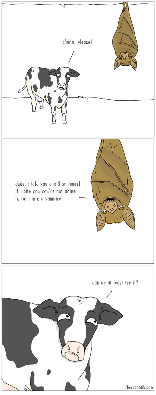 if animals could talk 10 pics funny animal comics humor and