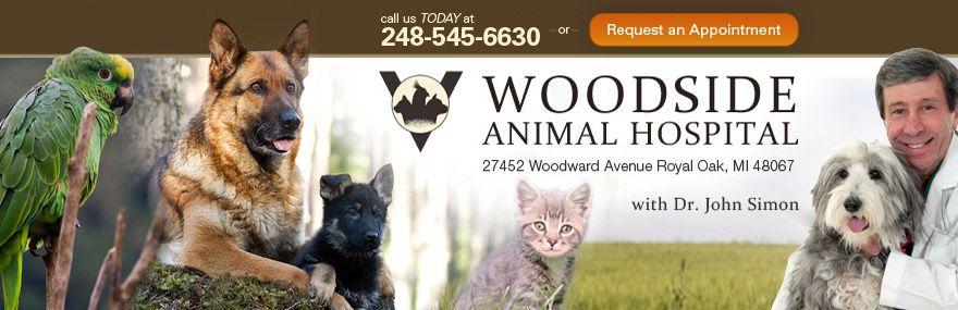 Royal Oak Veterinarian Woodside Animal Clinic Ferndale Berkley
