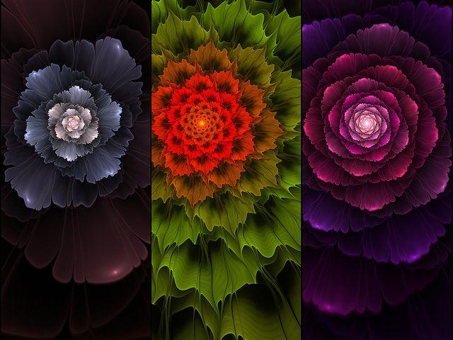 Fractal Plants by maha_on, via Flickr
