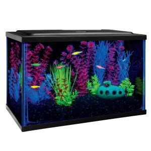 Glo fish starter kit at petsmart features blue for Glow fish tanks