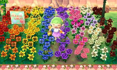 "mayorfinny ""so many rainbow flowers! ♡ "" Animal"