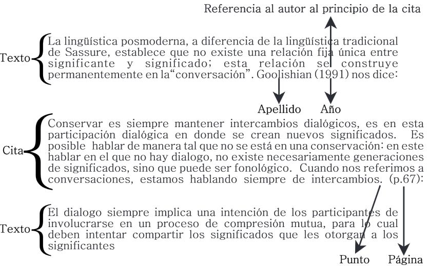 Ejemplo De Cita Basada En Autor Con Más De 40 Palabras