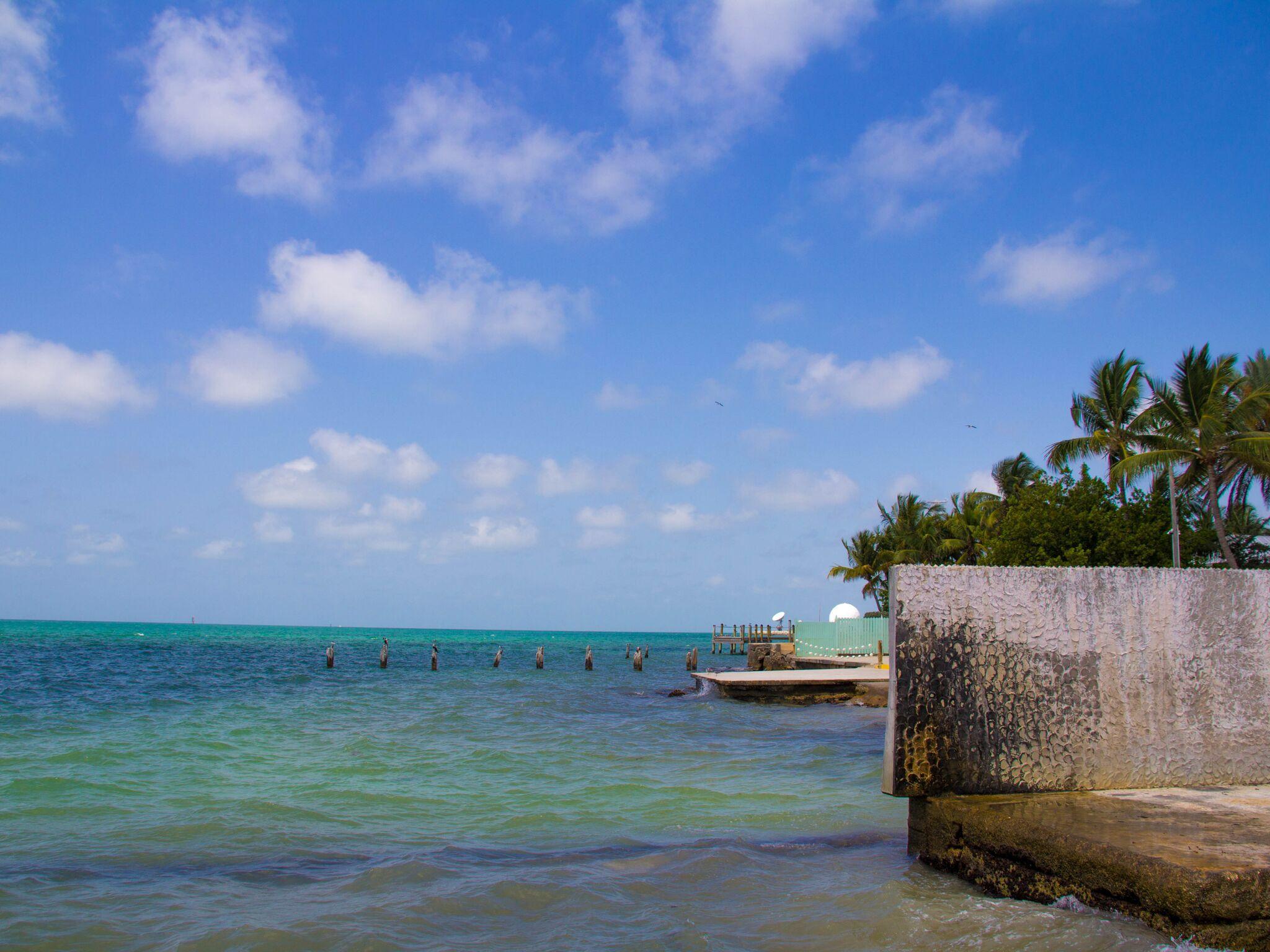 Key West, Florida #keywest #landscape #nature #floridakeys #miamiphotography #browardphotography #southfloridaphotography #crystalvazquezphotography