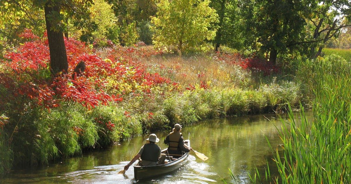 47+ Cedar rapids museum of art free admission ideas in 2021