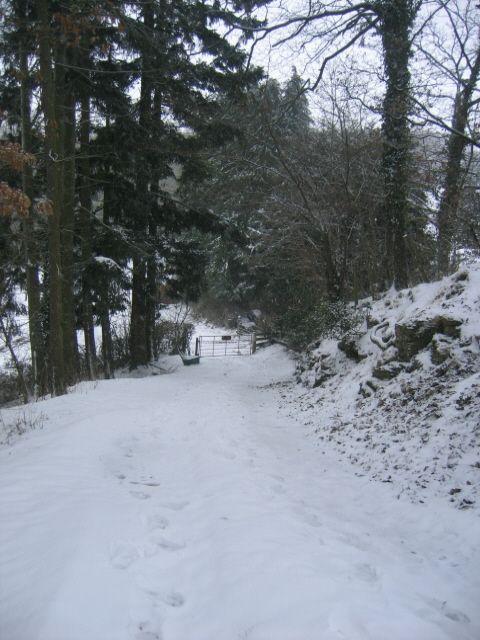 SkiSlope exit-snowbound 2013