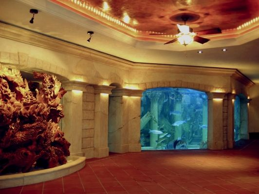 Finshed Basement With Built In Fish Tank Home And Garden