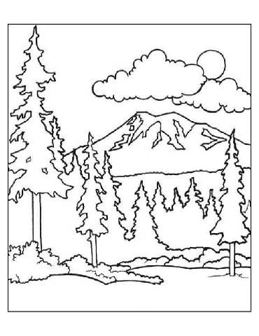 Preschool forest coloring page more