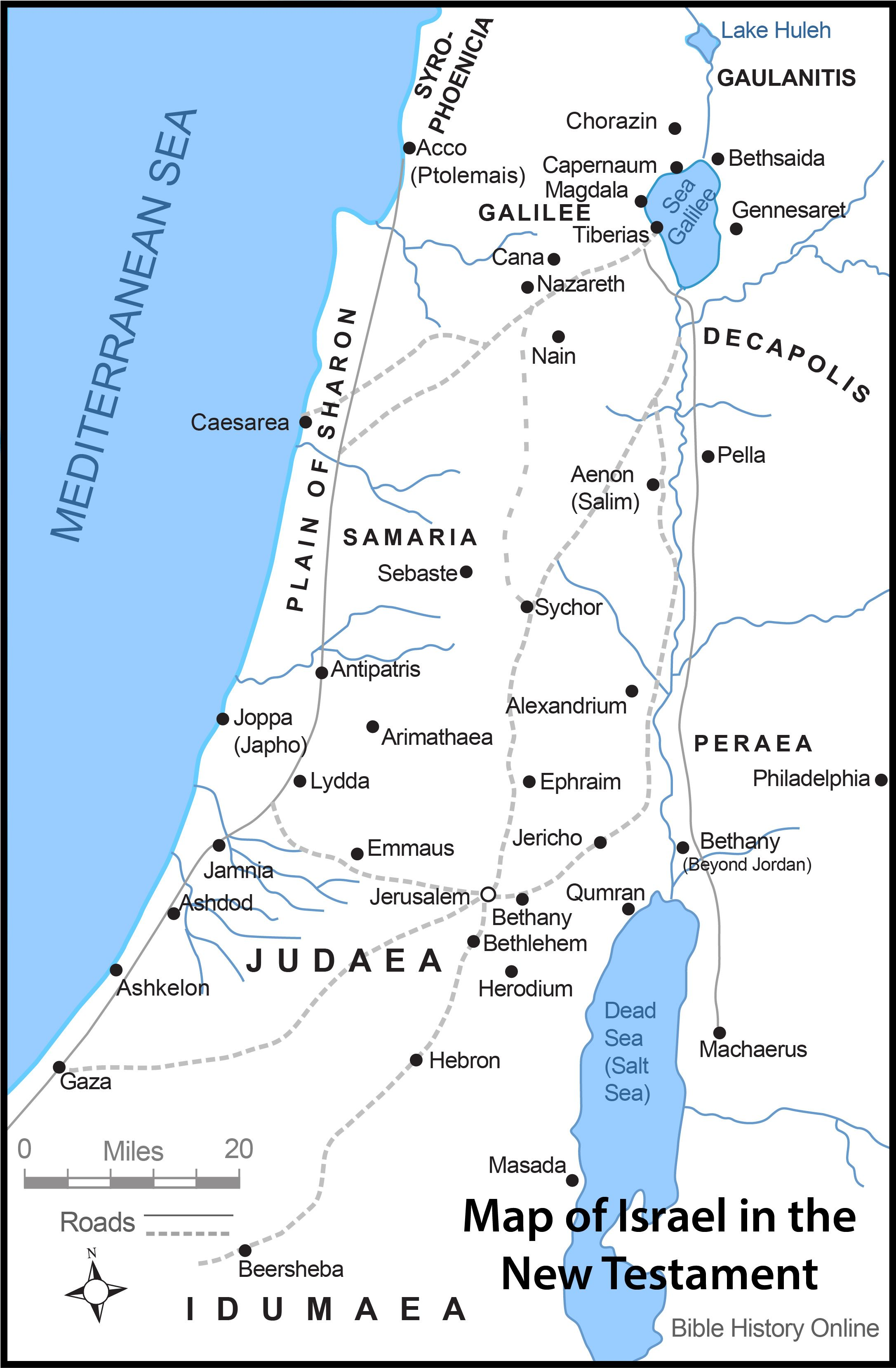 Map Israel New Testament Times Color Image