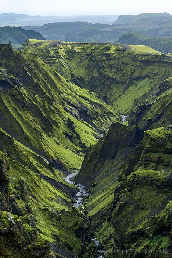 Circling Low - Vik - Highlands, Iceland - Fine Art Photo Print - Home Decor