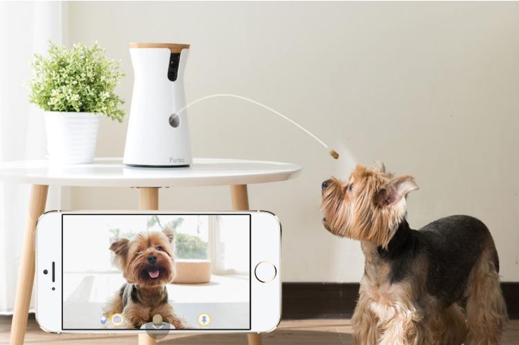 Furbo Dog Camera Dog Treat Launcher Treat tossing