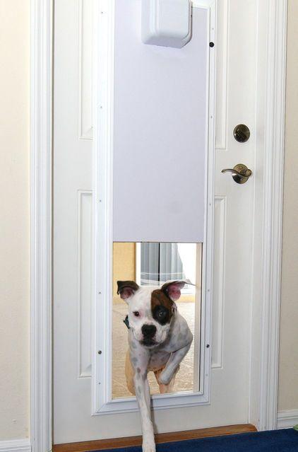 This Doggy Door Doesn T Open To Let Other Little Creatures In Too It Opens With His Collar Electronic Pet Door With One Touch Pr Pet Door Dog Door Pet Doors