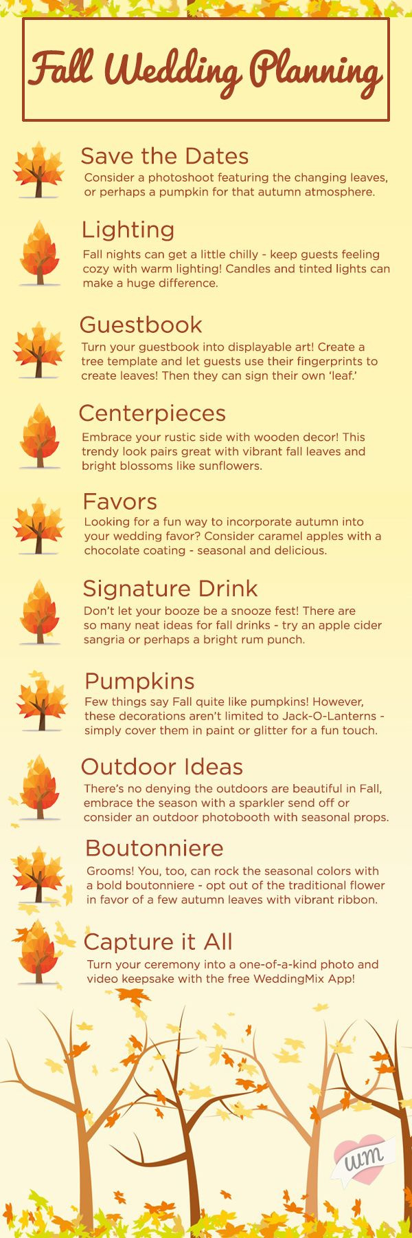 Fall Wedding Planning Essential Guide Pumpkin centerpieces