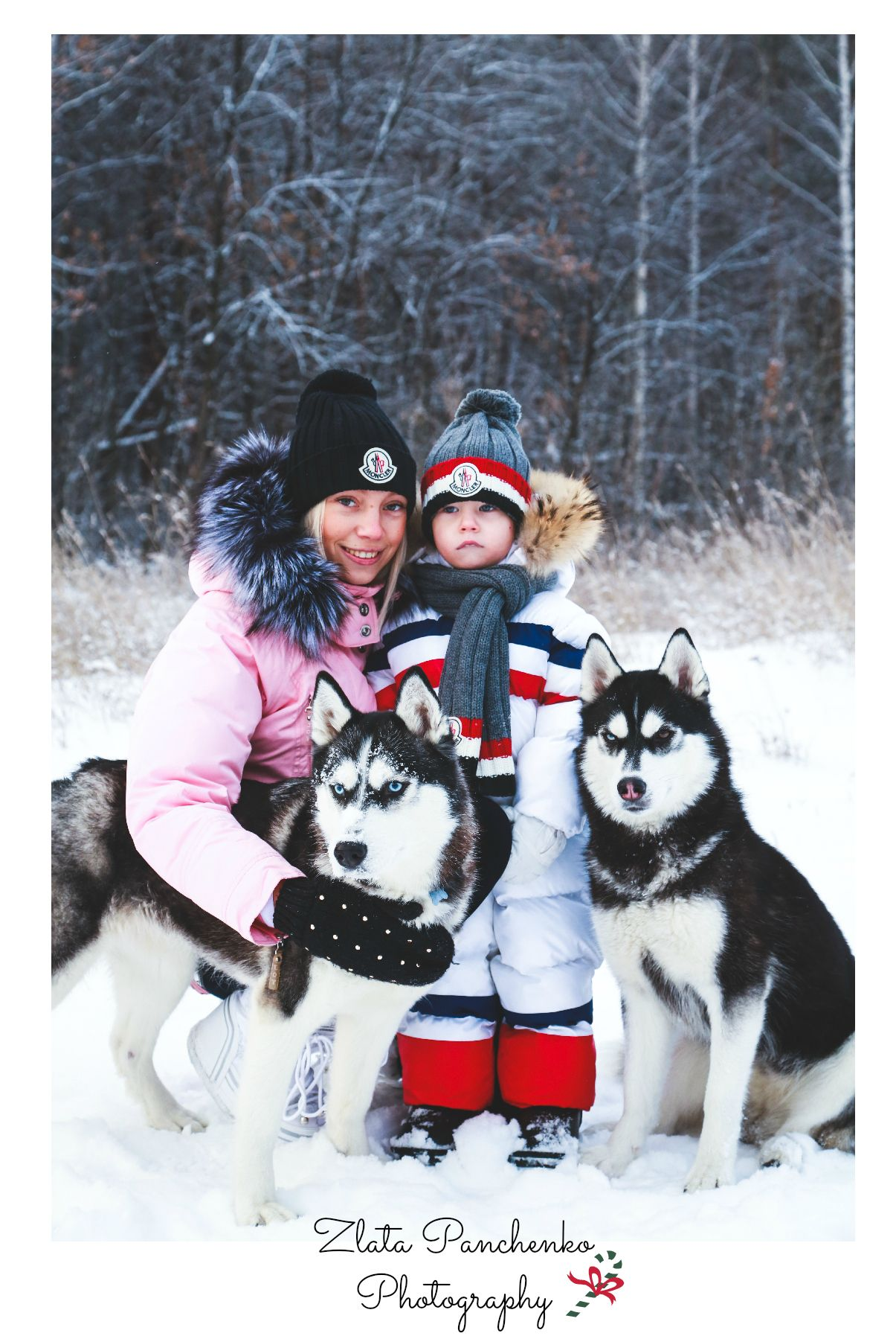 Amazing winter family photoshoot with husky dogs... Would