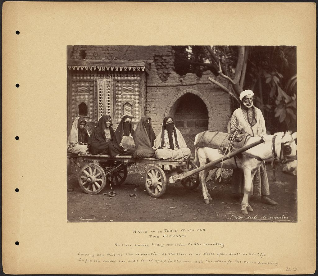 Arab with Three Wives and Two Servants | Old egypt, Egyptian man, Boston public library