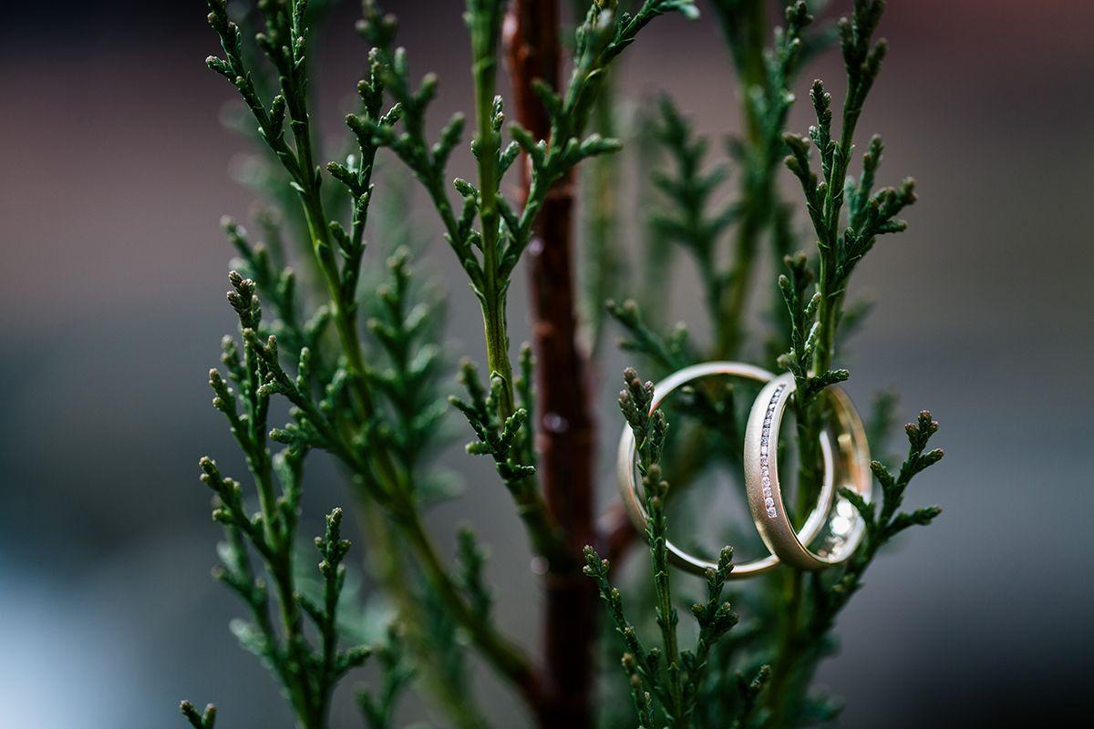 golden wedding rings  wedding   Hochzeitsblog marryMAG  Der…