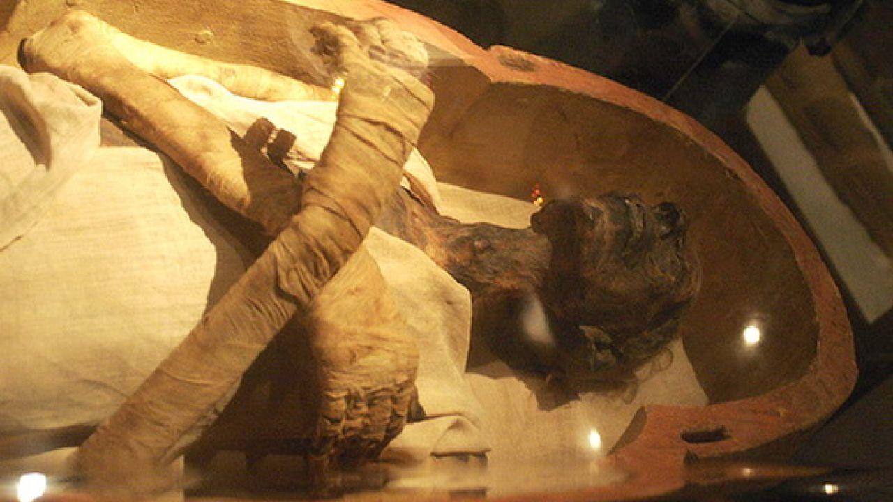 جثة فرعون في المتحف المصري Ancient Egyptian Egyptian Painting