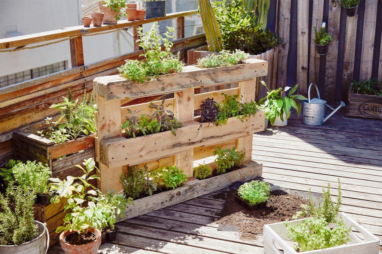 Urban Gardening Bei Aldi Nord Garten Gartenprodukte Garten Deko