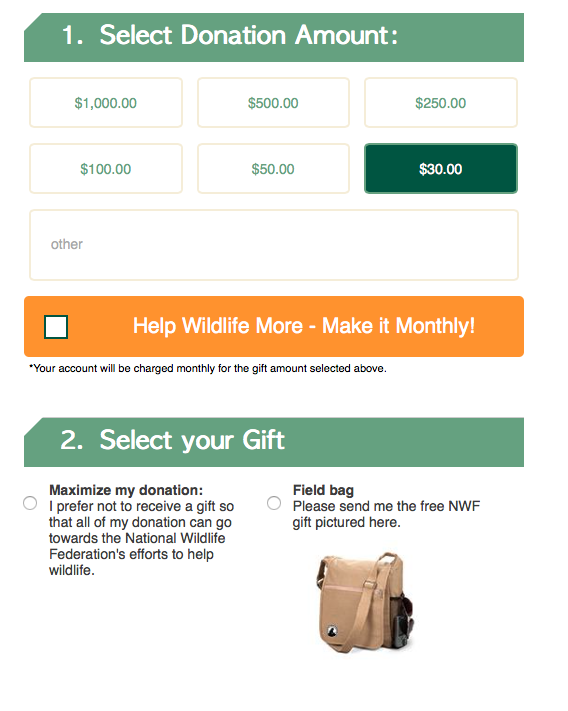 tips for nonprofit donation forms donation form best practices