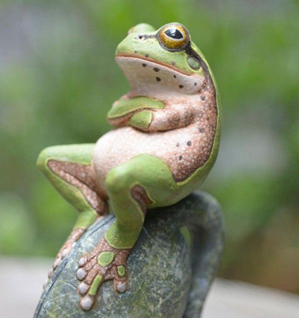 26 cute frog pictures nuh uh that can t be a real unadulterated