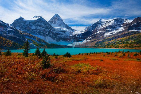 Autumn Color At Mt Assiniboine Provincial Park Bc Canada Beautiful Landscape Photography Beautiful Landscapes National Parks