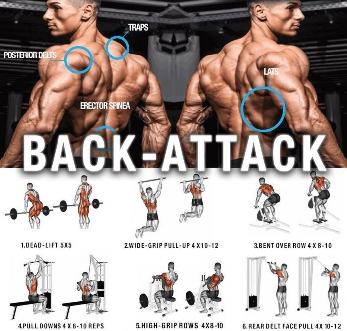 Strong Back Attack Training Healthy Fitness Workout Plan