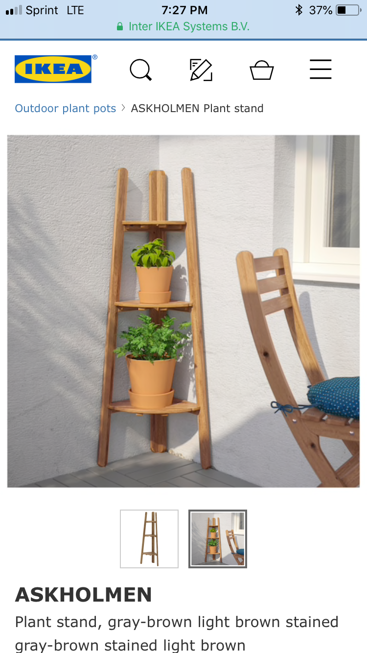 Pin by Ryane Amanda on Home Stuff | Plant stand, Plant stand