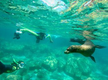 Espiritu Santo – Cabo Expeditions- snorkeling, snuba, full day trip to island