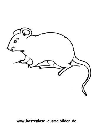 Ausmalbild Maus zum Ausdrucken | Ausmalen, Ausmalbilder ...