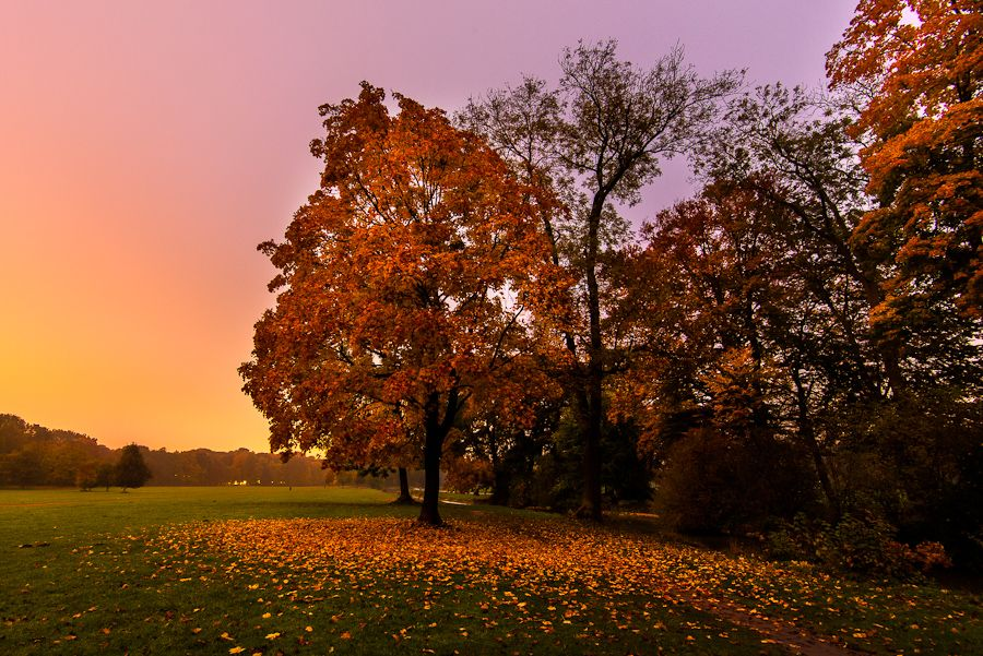 Munich The Fall In Englischer Garten By Alierturk On Deviantart Nature Photographs Garten Landscape