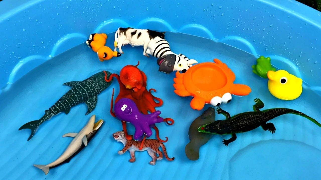 Toys images with names  Learn Zoo Wild Animals Names Educational Toys Video For Children