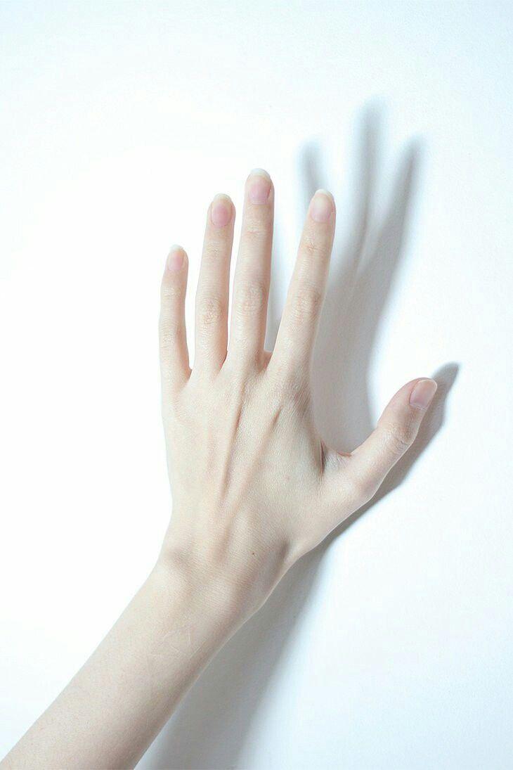 Beautiful hand | 손 | Pinterest | Beautiful hands, Oc and Photography
