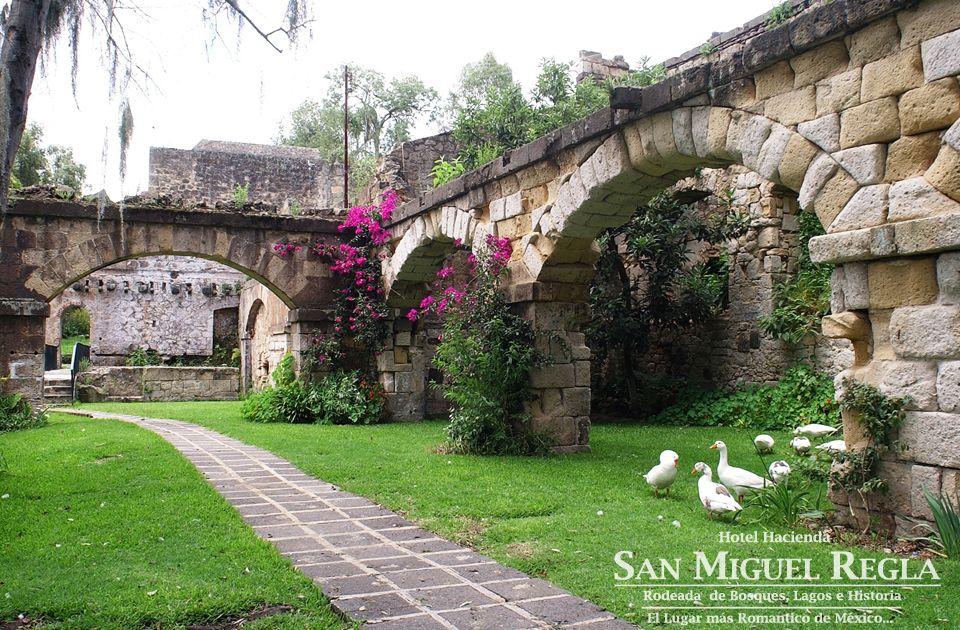 Arcos en jardines del hotel hacienda san miguel regla - Arcos de jardin ...