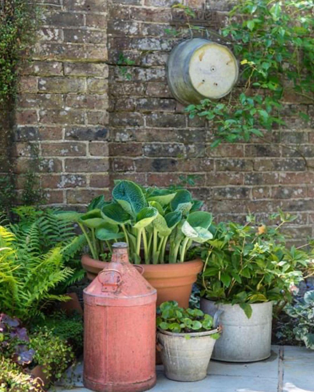 "Small Magical Garden Spaces on Instagram: ""💚🌿🍃 #smallmagicalgardens #smallgarden #gardendesign #gardening #courtyardgarden #redbrickwall #containergardening #galvanisedplanter…"""