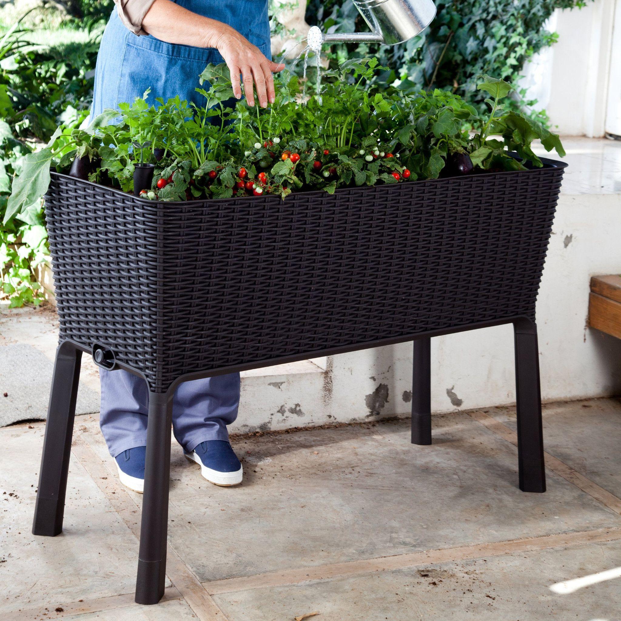 design elevated garden vyne bed to raised kitchen