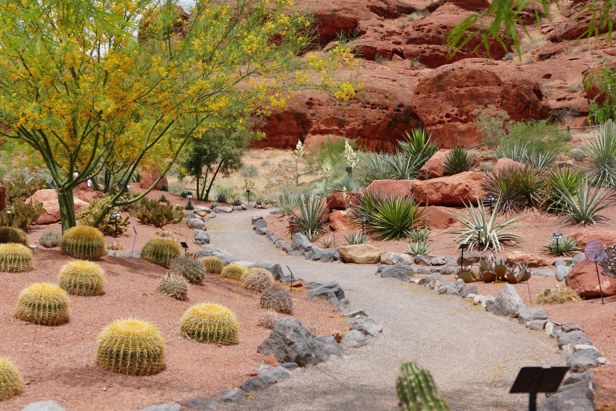 Red Hills Desert Garden (St. George, UT): Top Tips Before You Go ...