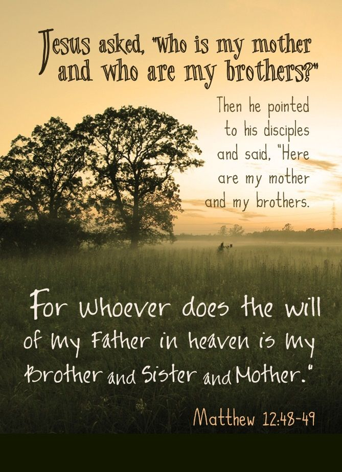 Whoever Does The Will Of My Father In Heaven Is My Brother And
