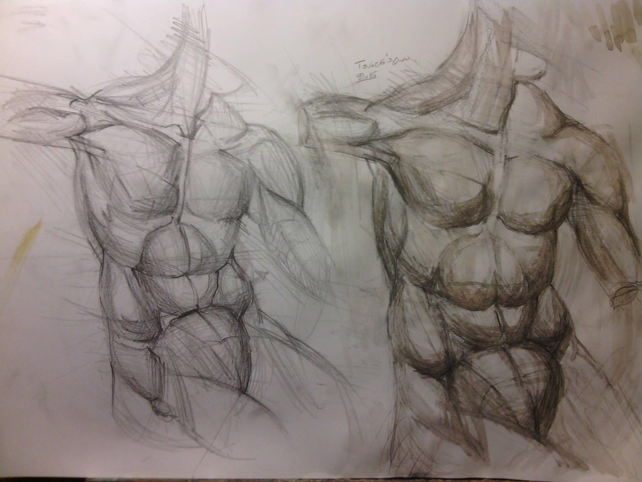 torso study-pencil and aquarelle on paper.