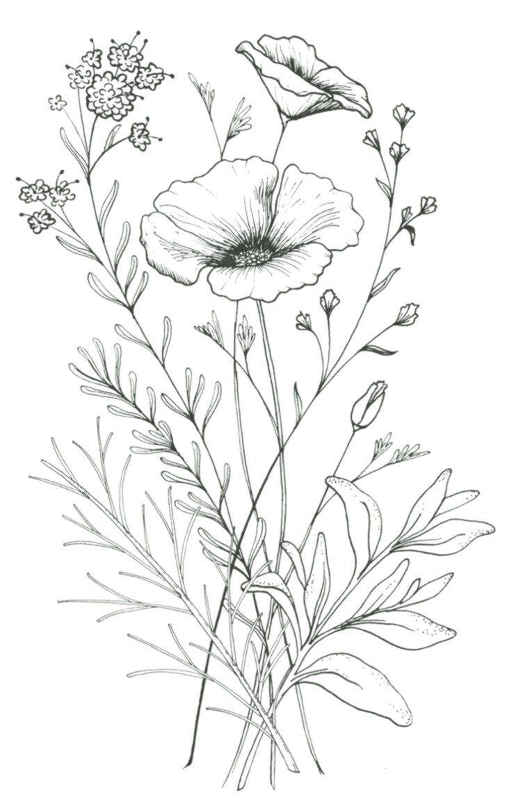 Photo of 25 informations et idées sur de beaux dessins de fleurs # dessin de fleurs