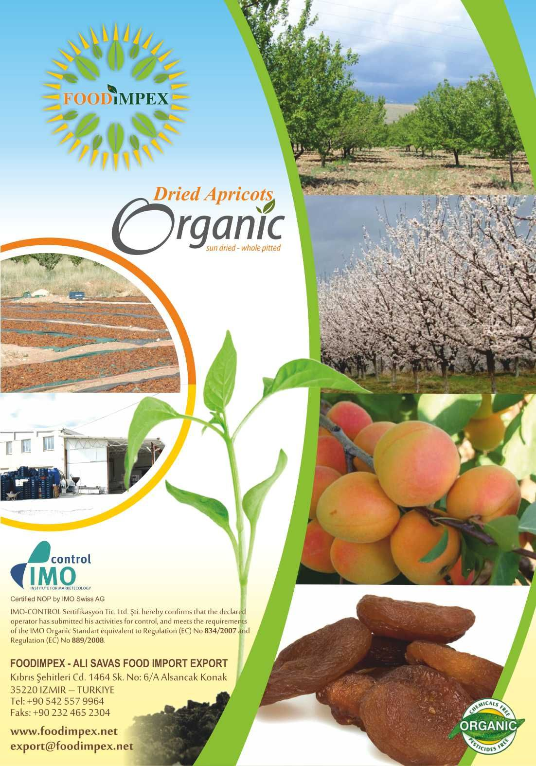 organic dried apricots healthy and delicious