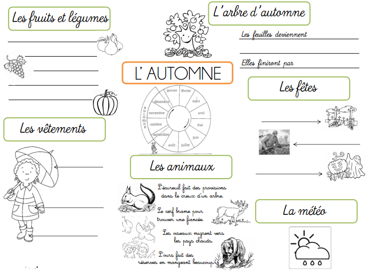 Cartes Heuristiques Les Saisons L Ecole De Crevette Carte Heuristique Heuristique Carte Mentale