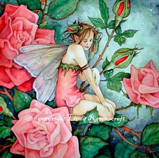 """Résultat de recherche d'images pour """"fée des roses"""""""