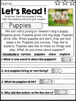 Reading Comprehension And Text Evidence For Beginners Animals