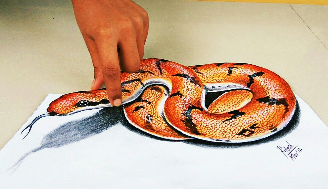 Amazing Illusion Drawing Of Snake With Pencil Colors On Paper