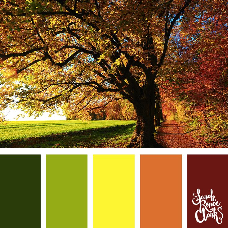 25 Color Palettes Inspired by Beautiful Landscapes #autumncolors