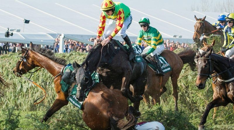 Sports Insider Today: Cruelty in Horse Racing