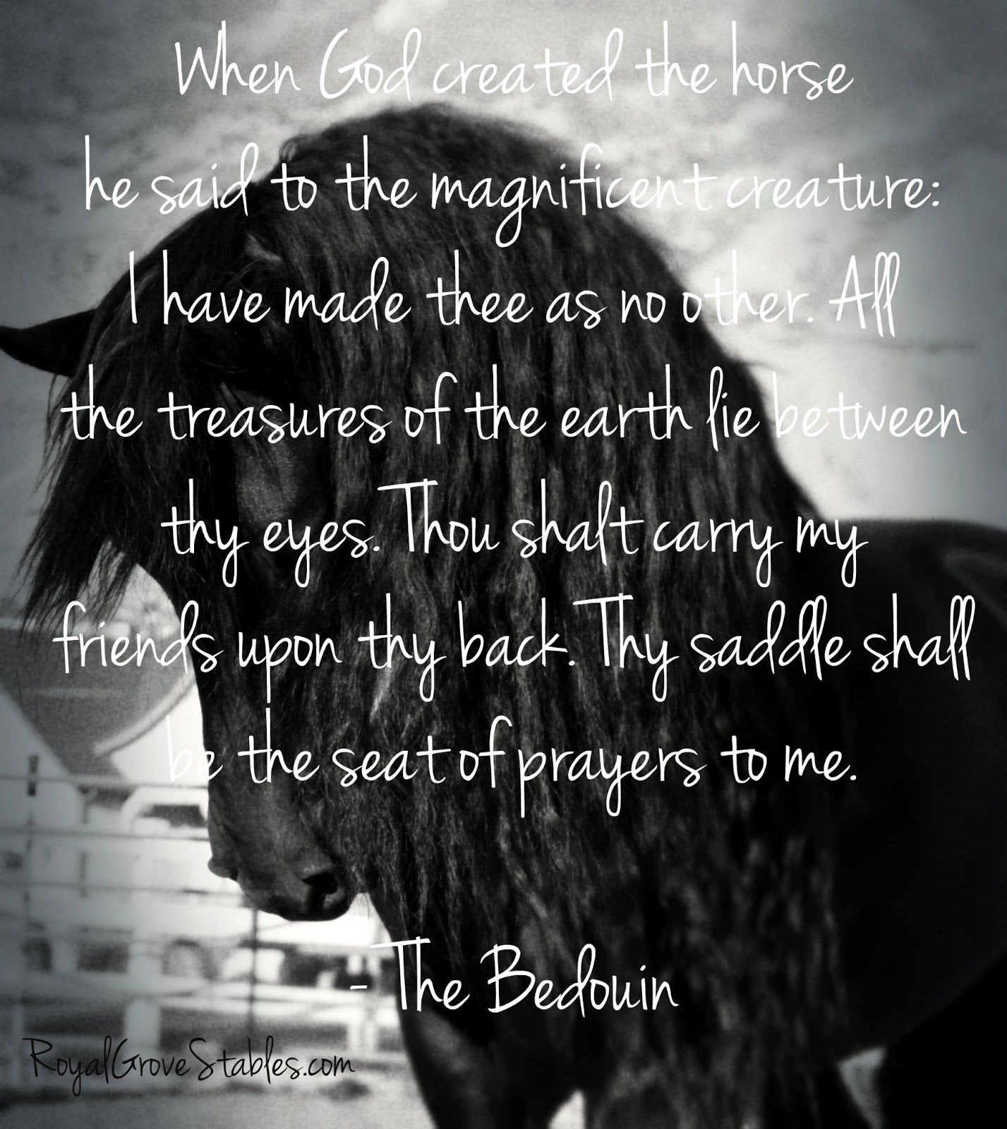 Inspirational horse quotes the power of the horses spirit is like nothing on earth i love inspirational quotes especially hor