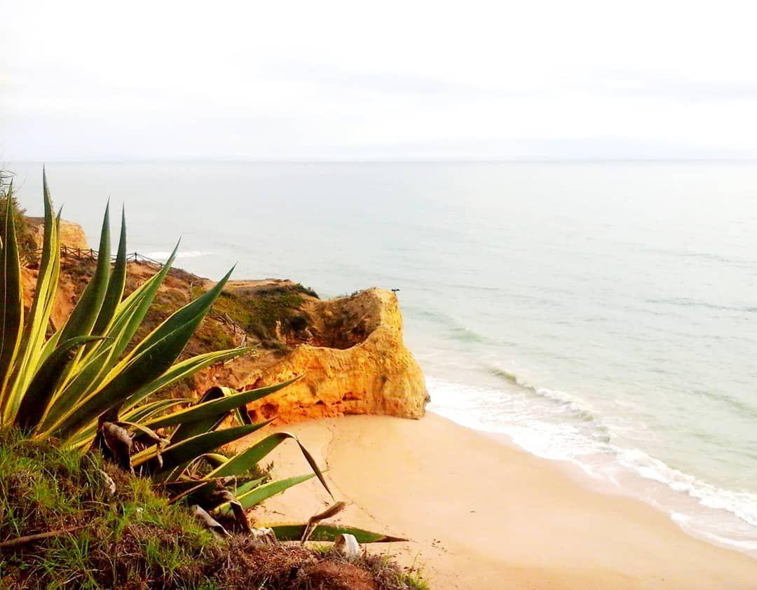 Wie schön wäre jetzt ein Tag am Meer mit Wind, Sand und dem ...