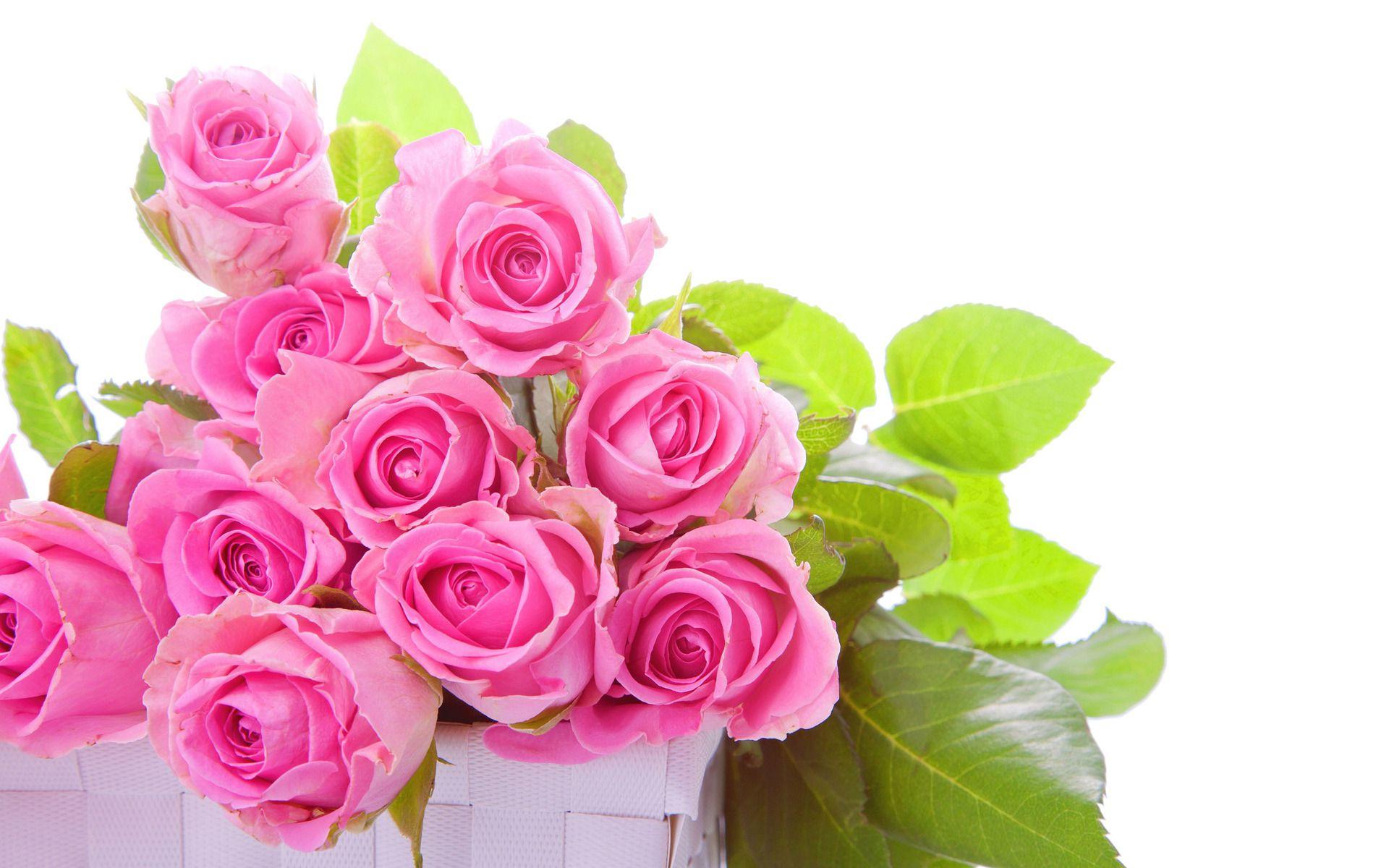 Pink Rose Garden Wallpaper pink-roses-bouquet-flower-hd-wallpaper-1920x12001 1,920×1,200