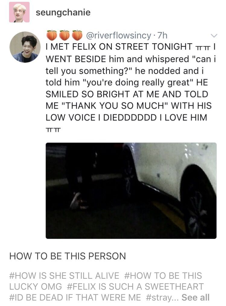 God Bless This Fan Omg We Need More Kpop Fans Like This If You See A Kpop Idol On The Streets Do Not Run Up To Felix Stray Kids Kid